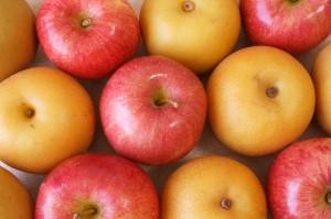 りんごなし